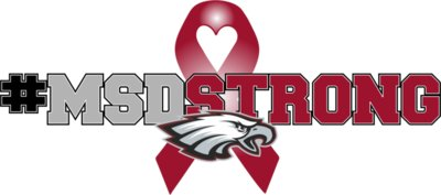 MSDStrong Ribbon