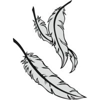 feathers02 Thumbnail