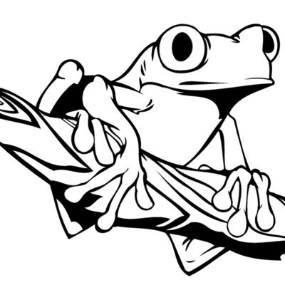 Frogs Toads Thumbnail